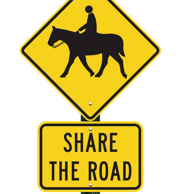 Traffic Congestion and Horse Sense